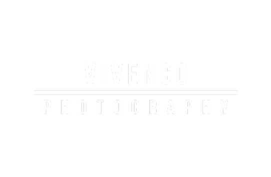 vivenco partner logo